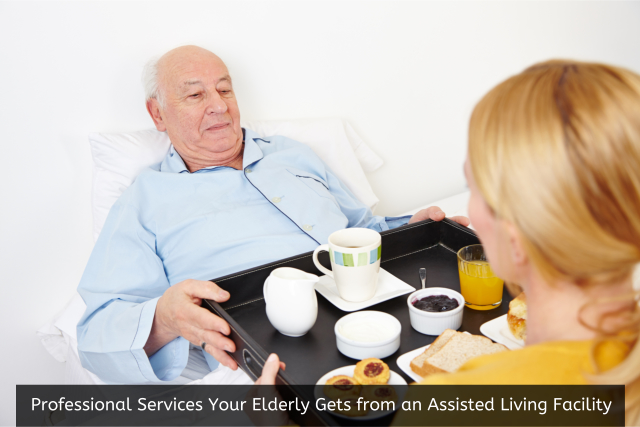 Professional Services Your Elderly Gets from an Assisted Living Facility